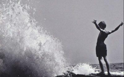Pacific Palisades di Dario Voltolini